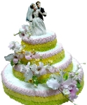 4 С Жених и невеста от 5 кг